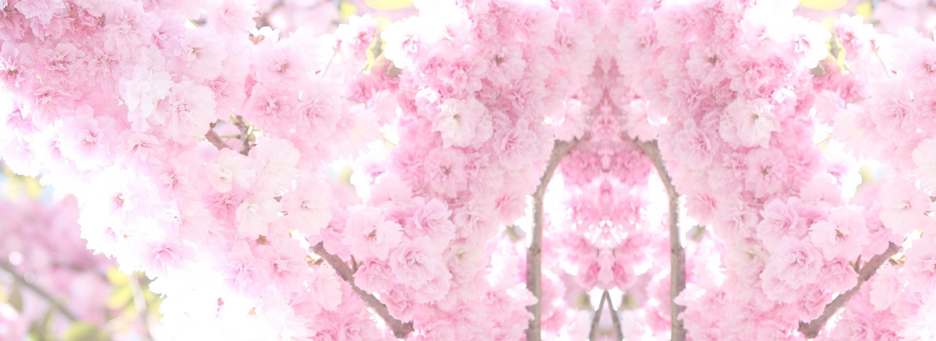 Весна на базе отдыха Ёлки